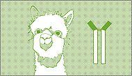 Unconjugated primary camelid antibodies
